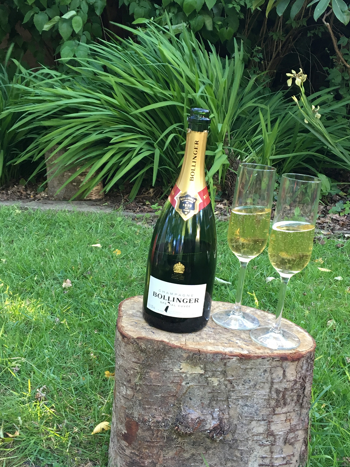 Scrumbles Cottage - the diary of a new build in the New Forest (a bottle of celebratory champagne)